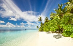 Sun, sea and travel vaccinations